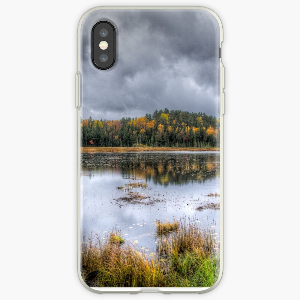 Overcast day over the pond iPhone Case & Cover