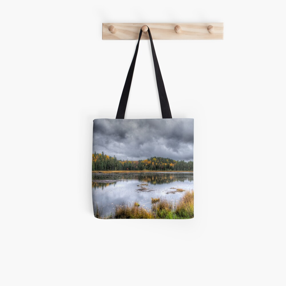 Overcast day over the pond Tote Bag