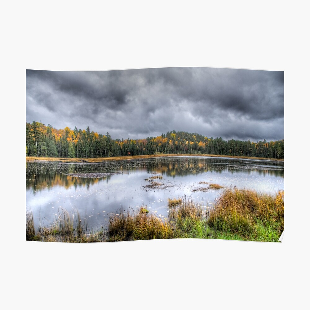Overcast day over the pond Poster