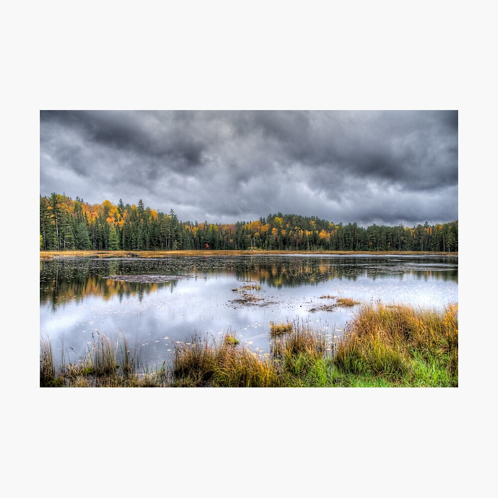 Overcast day over the pond Photographic Print