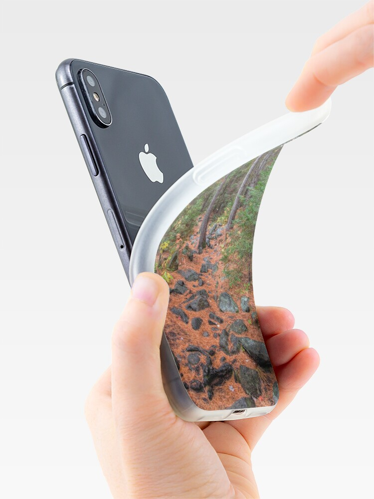 Alternate view of Rocky path through the pine forest iPhone Case & Cover