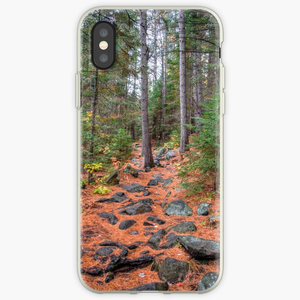 Rocky path through the pine forest iPhone Case & Cover