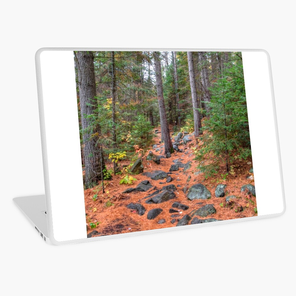 Rocky path through the pine forest Laptop Skin