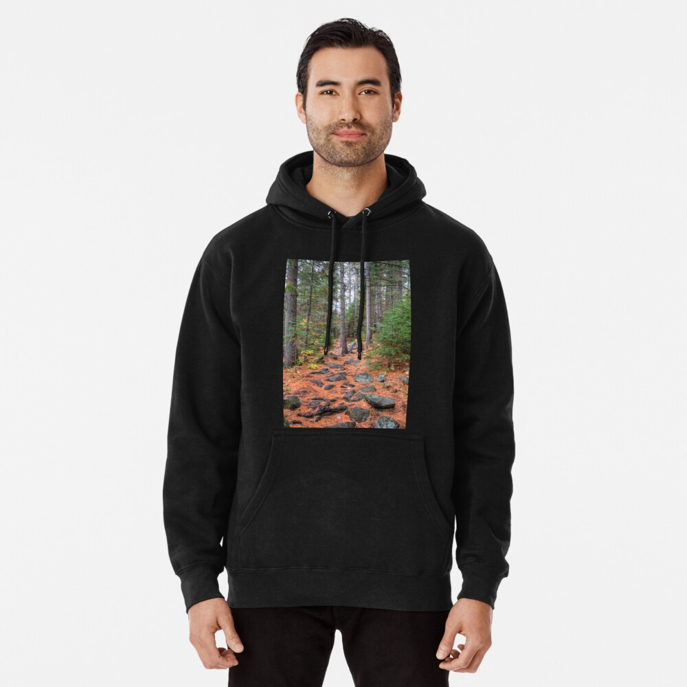 Rocky path through the pine forest Pullover Hoodie