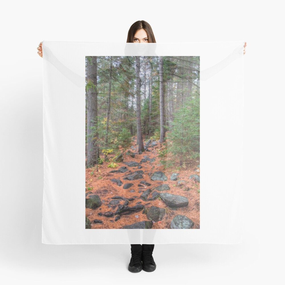 Rocky path through the pine forest Scarf
