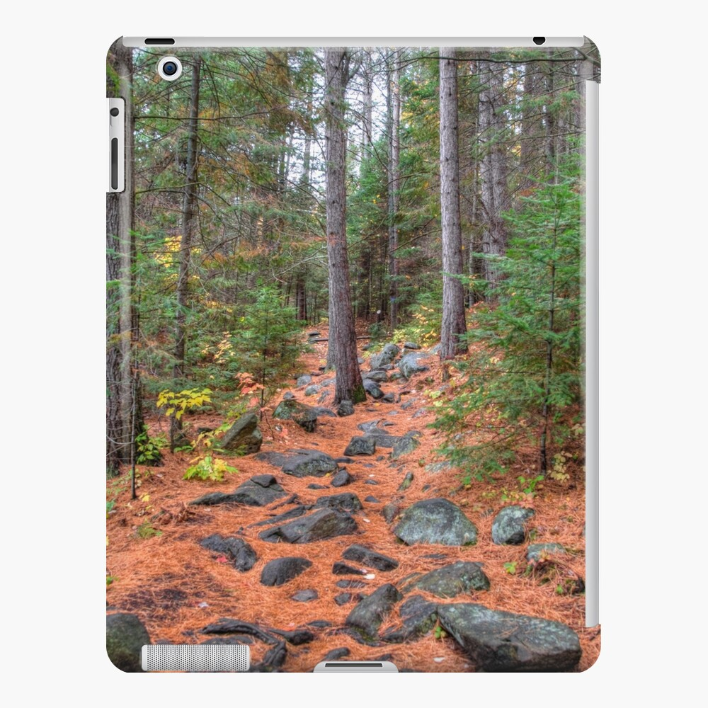Rocky path through the pine forest iPad Case & Skin