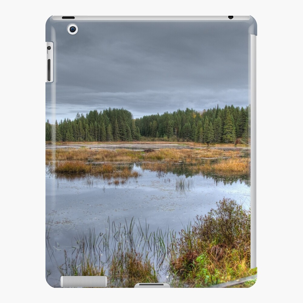 Wetlands iPad Case & Skin