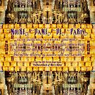 Notre-Dame Cathedral Rose Stained Glass Candles Novel Quote by Beverly Claire Kaiya