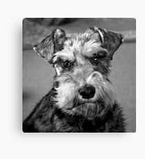 Flo in Black and White Canvas Print