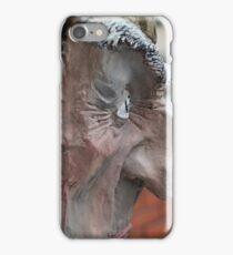 evil beside iPhone Case/Skin