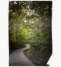 Nature Path to Light Poster