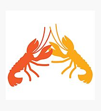 Lobster fight Photographic Print