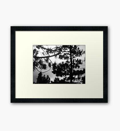 Lake Tahoe, Nevada, USA Framed Print