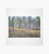 Pine trees in the marsh Scarf