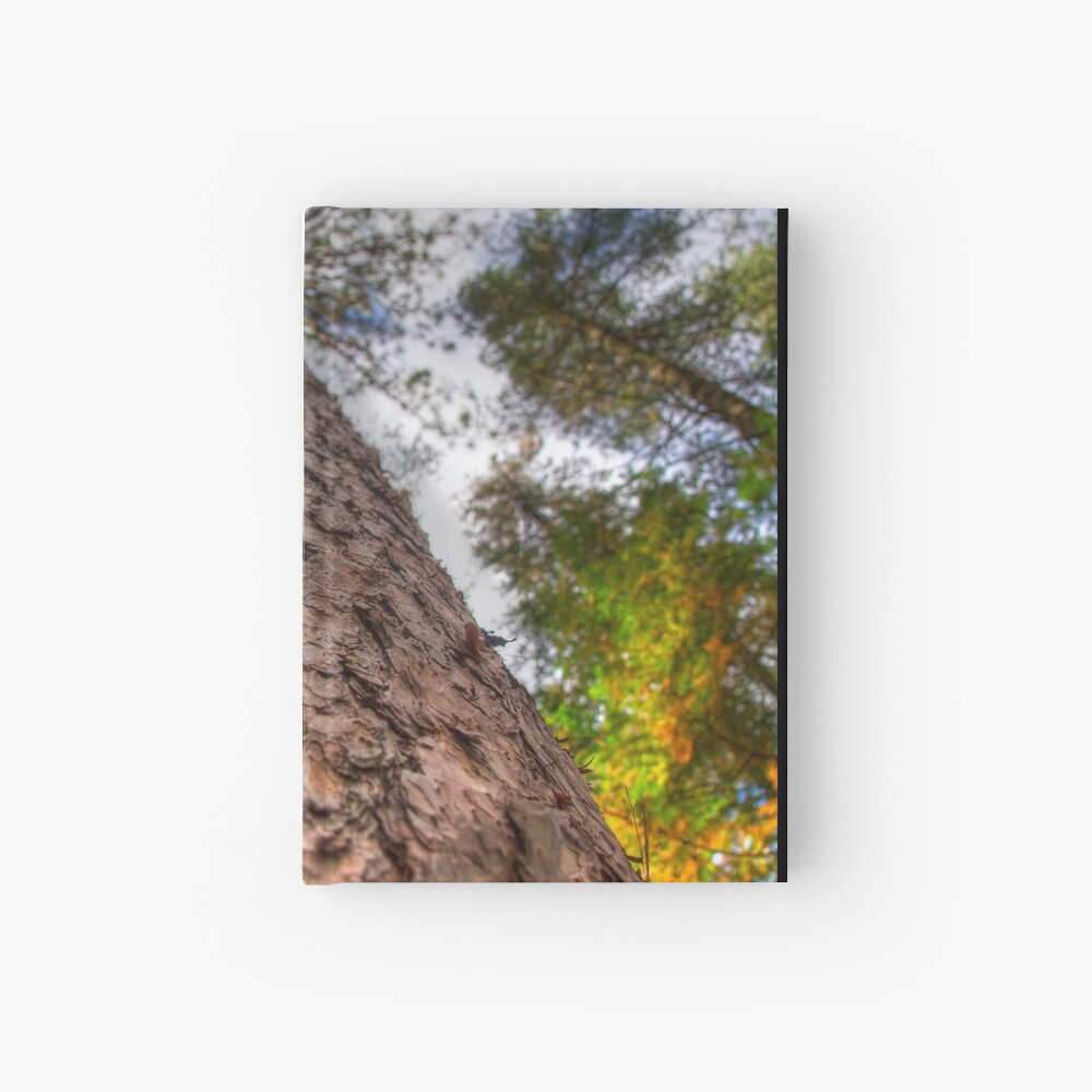 Tall Pine Hardcover Journal