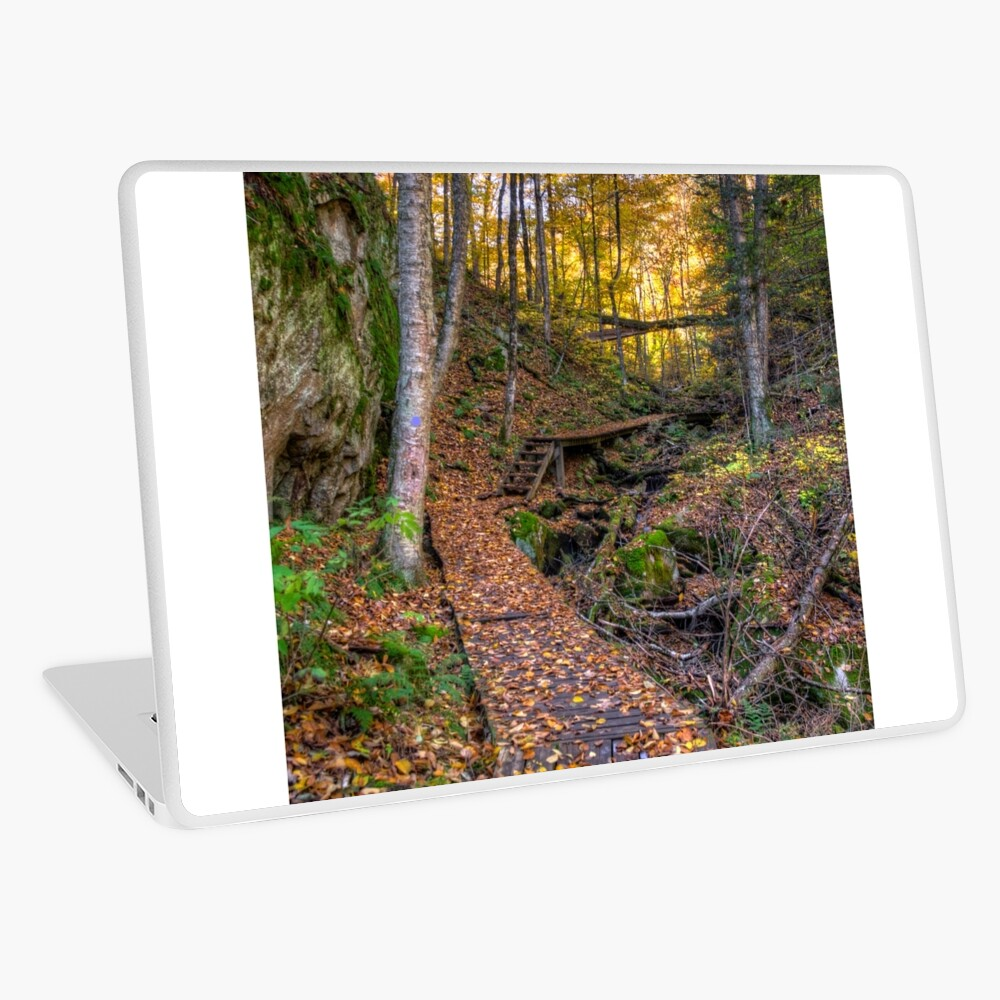 Walkway through the woods Laptop Skin