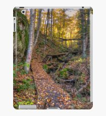 Walkway through the woods iPad Case/Skin