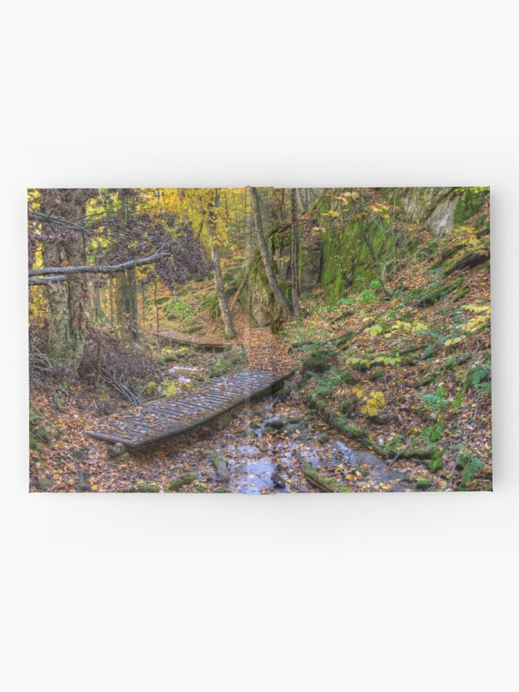 Alternate view of Forest walkway Hardcover Journal