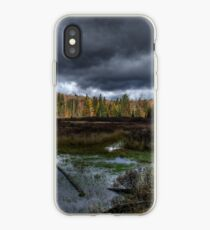 Stormy marsh iPhone Case