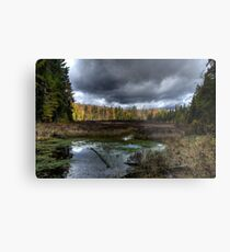 Stormy marsh Metal Print