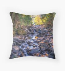 Rocky riverbed Throw Pillow