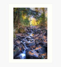 Rocky riverbed Art Print