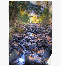 Rocky riverbed Poster