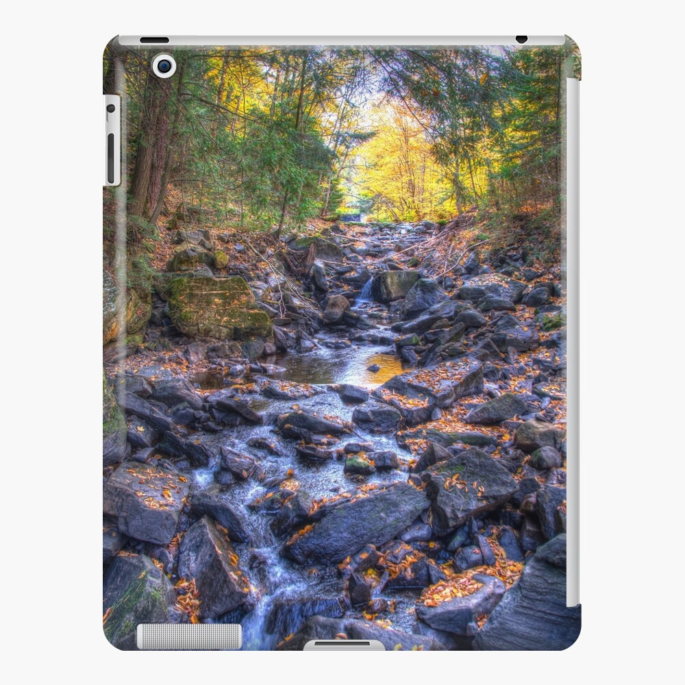 Rocky riverbed iPad Case & Skin