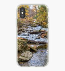 Forest river iPhone Case