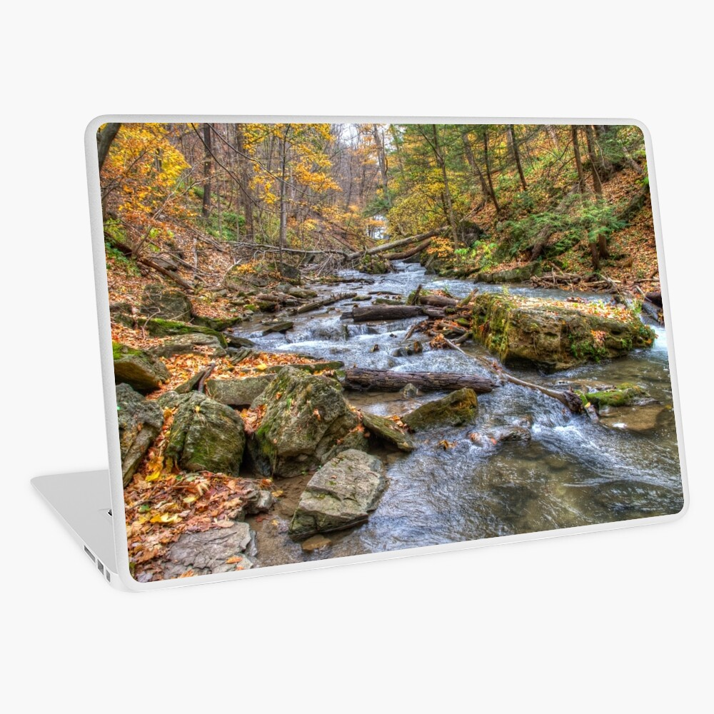 Forest river Laptop Skin
