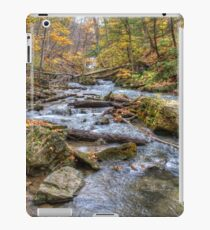 Forest river iPad Case/Skin