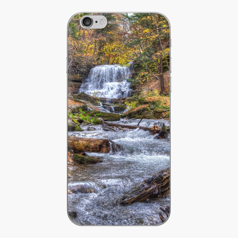 Forest waterfall iPhone Skin