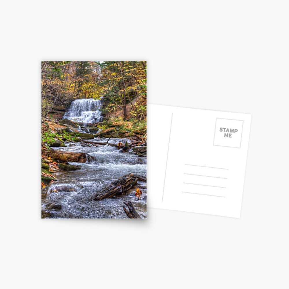 Forest waterfall Postcard