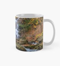 Forest waterfall Classic Mug
