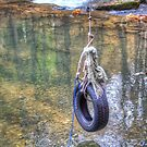 Tire swing by Dave Riganelli