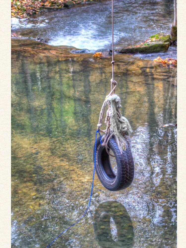 Tire swing by daveriganelli