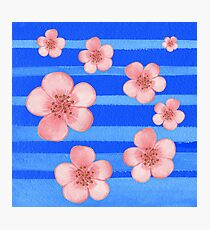 Pink Flowers Blue Stripes for Baby Room Photographic Print