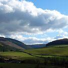 View over Walkerburn by rosie320d