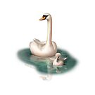 Beautiful Swan and Baby by IconicTee
