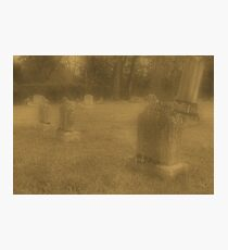 """'""""THE CEMETERY, a Series', No. 7, Three Little Lambs at Dusk""""... prints and products Photographic Print"""