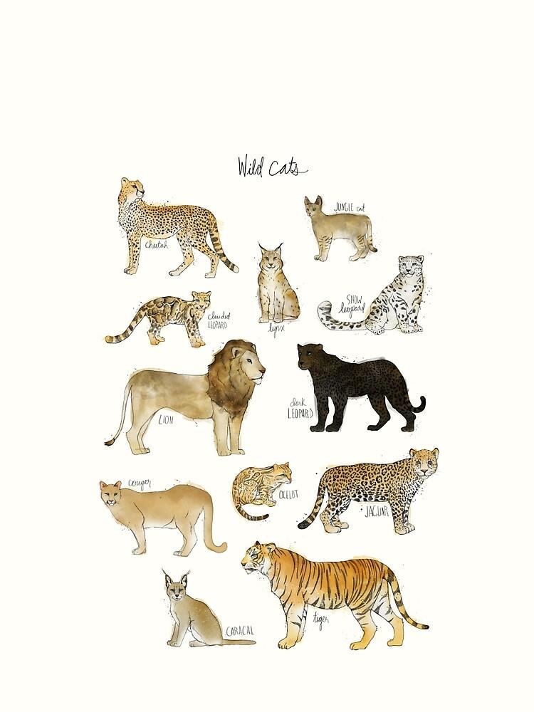 Wilde Katzen von AmyHamilton