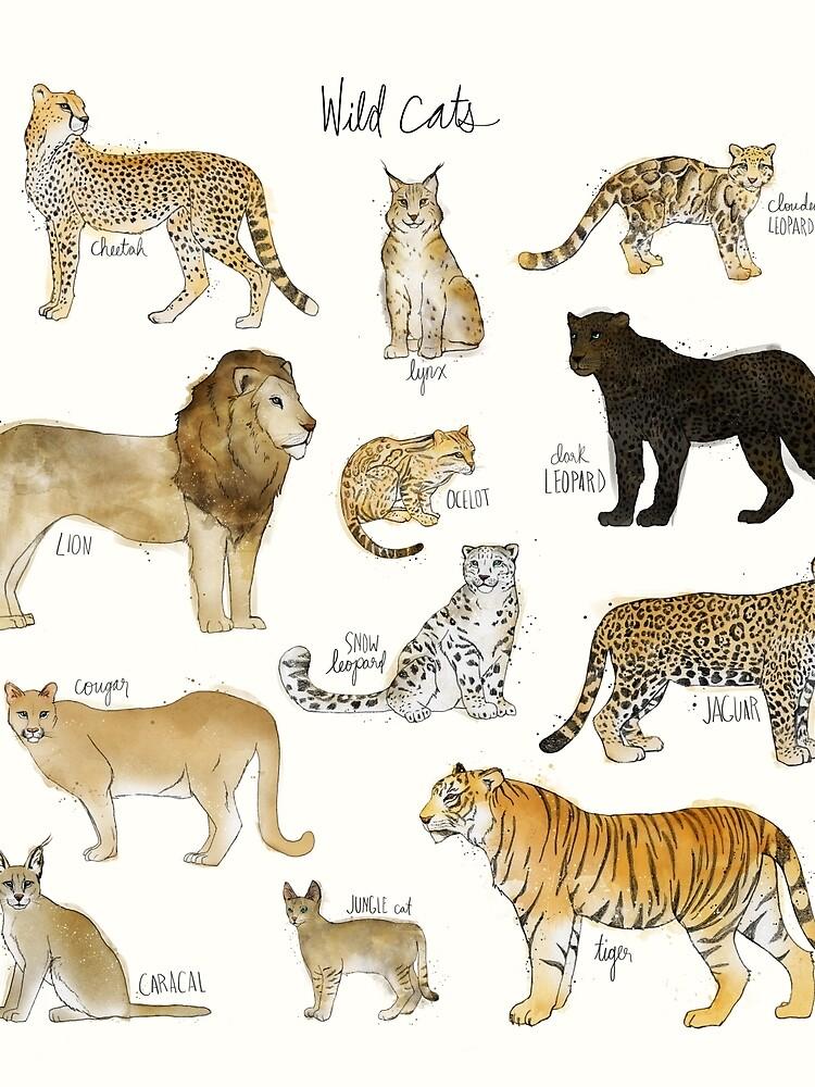 Wild Cats by AmyHamilton