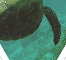 Sea turtle ocean adventure wanderlust hipster boho typography photo Sticker