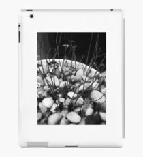 The Evolution of Nature iPad Case/Skin