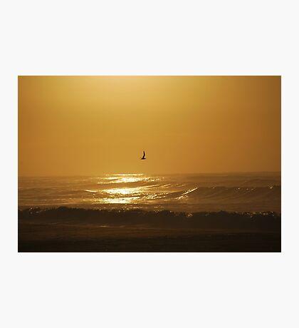 Dawn Sunrise  Photographic Print