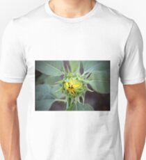 Sunflower Bud T-Shirt