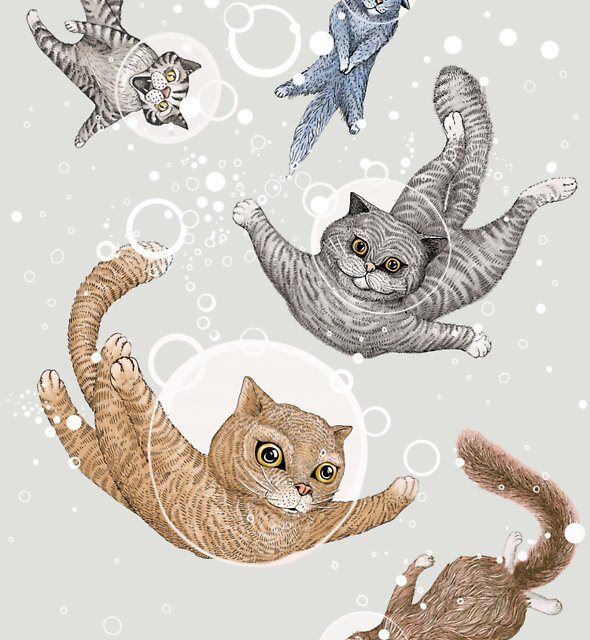 Cat by Ruta Dumalakaite