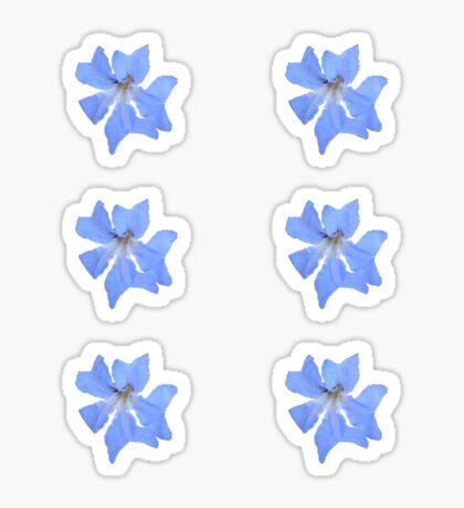 Blue Wildflower Sticker