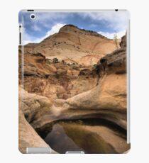 CAPITAL REEFS iPad Case/Skin