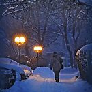 Winter night, coming home by Luisa Fumi